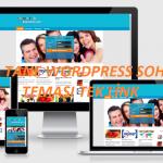 WordPress Sohbet Teması Ücretsiz